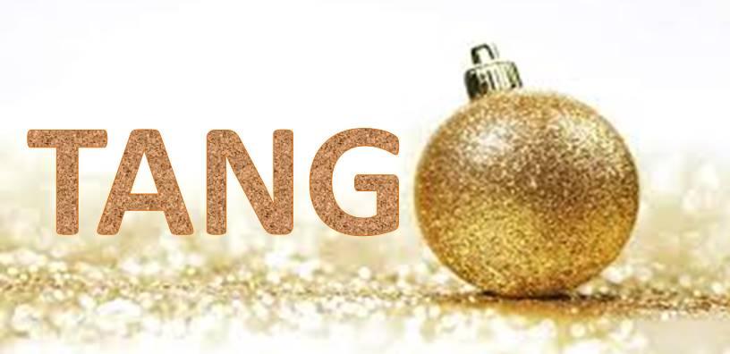 Pratique dirigée de Noël le 17 décembre